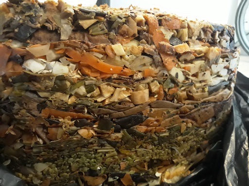 composted vegetable peels