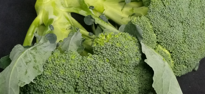 two raw broccoli plants on a black background