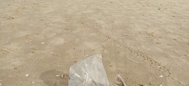 plastic bag on a sand, people walking at a back ground