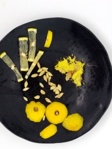 lemon peels, lemon seeds and slices on a black plate