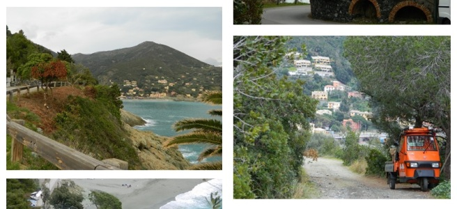 photos of a settlement in mountains, mountain, houses, trees and sea views